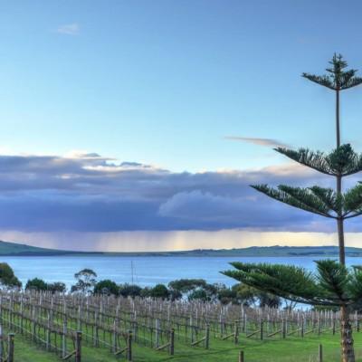 Bay of shoals kangaroo island
