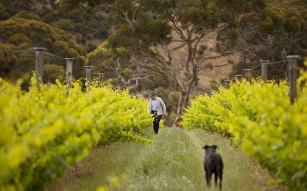 Jacques Lurton in his Kangaroo Island vineyard