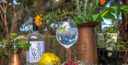 kis-wild-gin